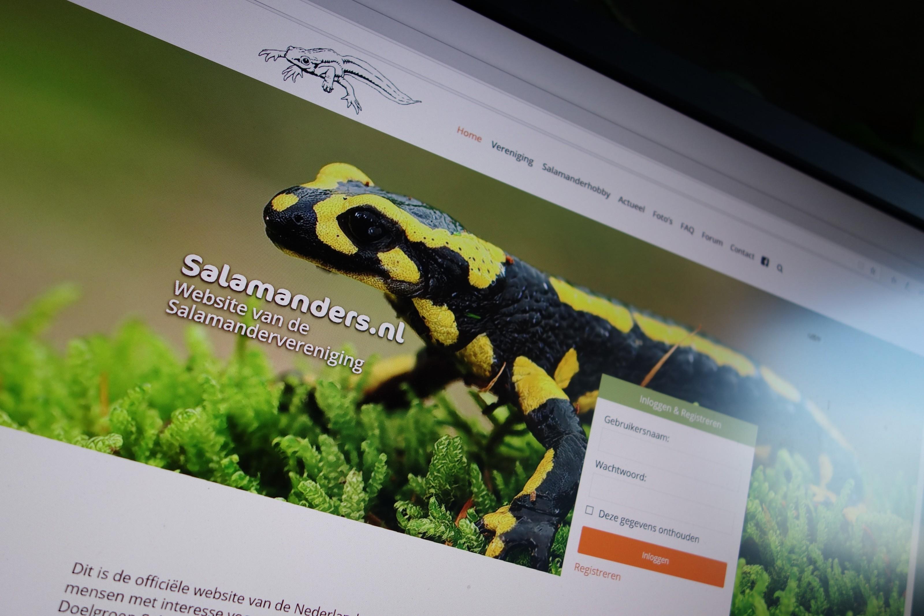 Updates Op De Salamanders.nl